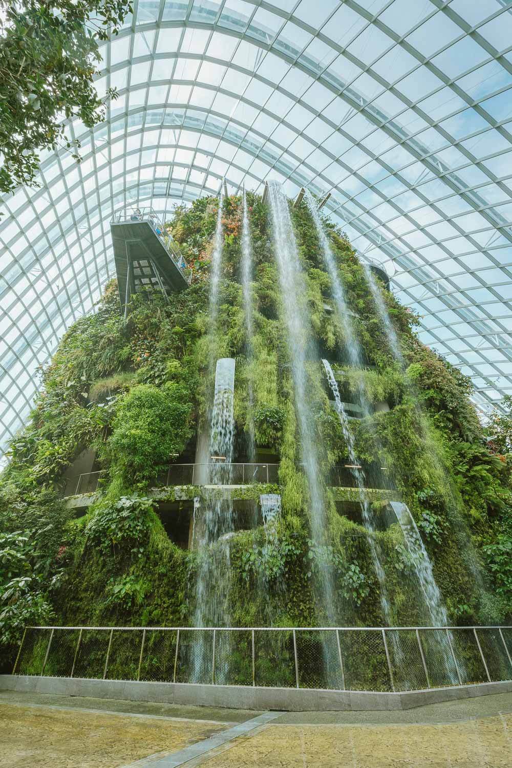 Cloud-Forest-Singapura.jpg