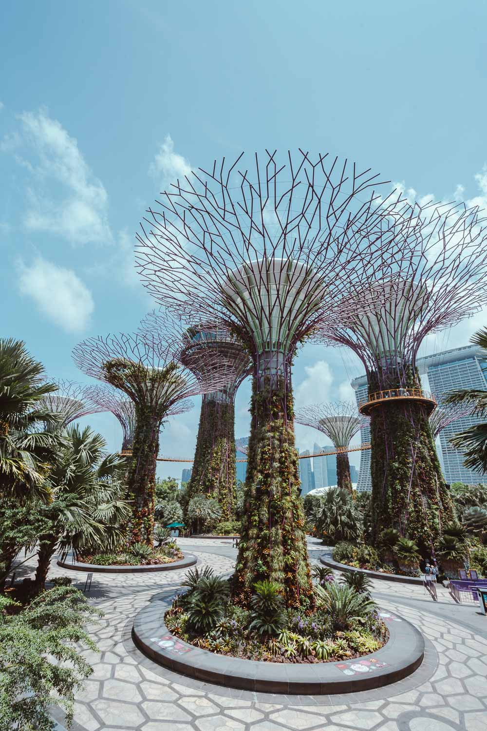 Gardens-by-the-bay-singapura.jpg