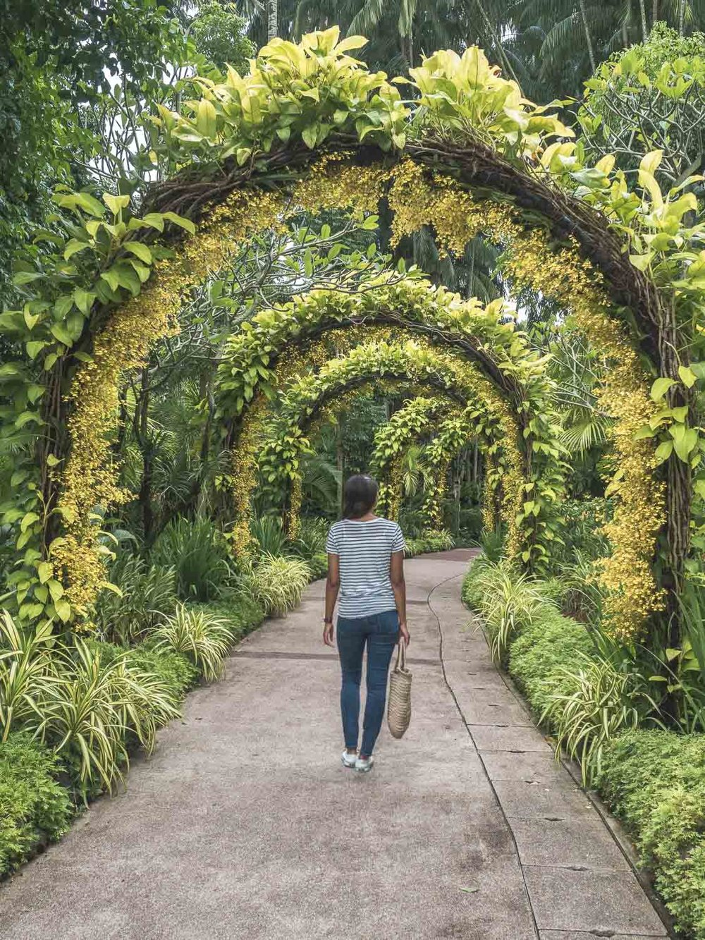 Jardim-Botanico-Singapura.jpg