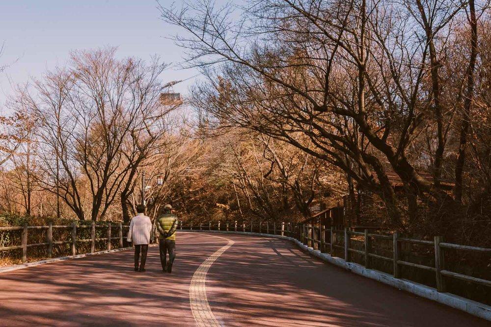 Namsan-Park-Seoul-South-Korea-Elen-Pradera.jpg