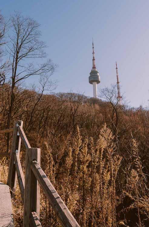 Namsan-Park-Seoul-Elen-Pradera.jpg