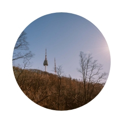 PS: If you do not want to climb the park stairs to the N Seoul Tower, you can take the cable car (for 7,000 won, one way) and then walk down the steps. -