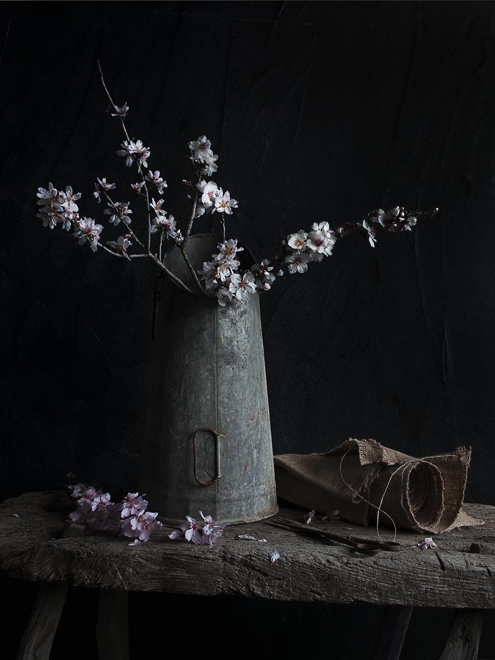 fleur 03 web.jpg