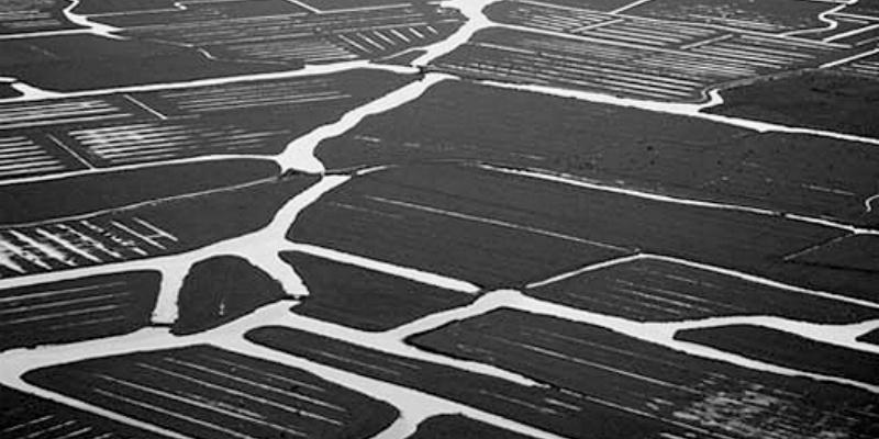 Polders within marshland