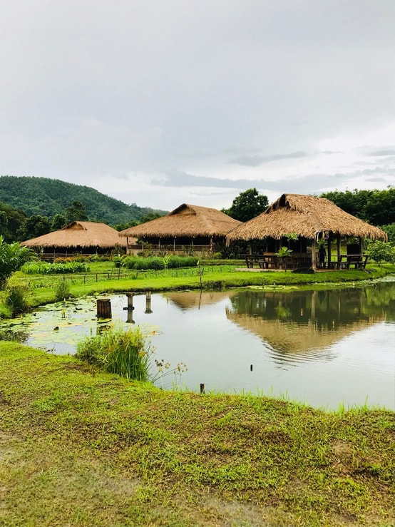 eco lodge thailand.jpg
