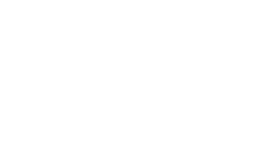 Canalini Consulting Group