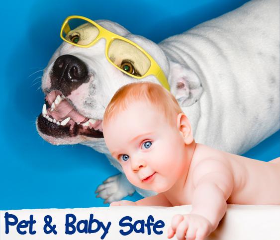 baby-pets-mt2.jpg