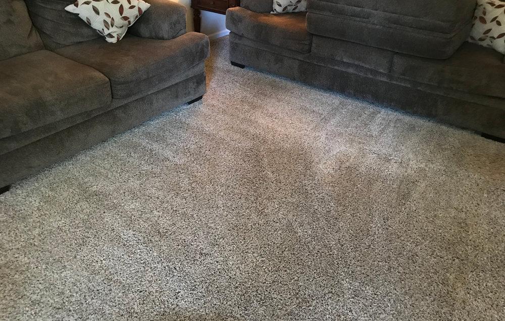 madison-heights-steam-carpet-clean-1.jpg