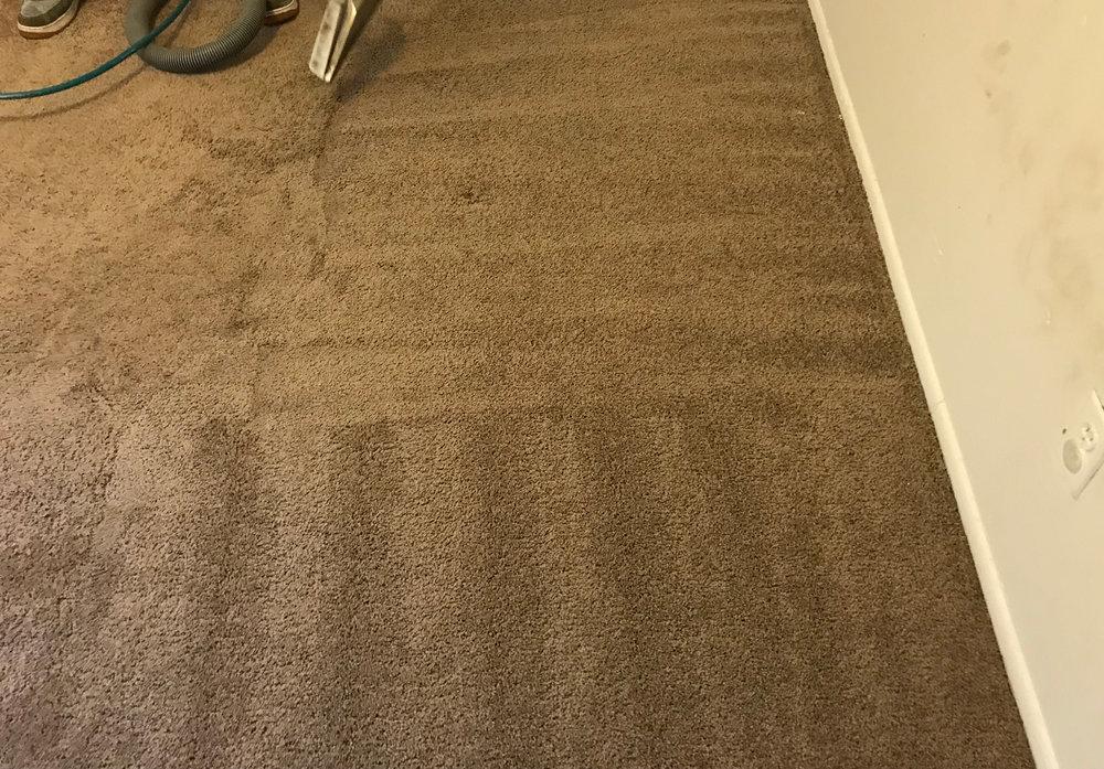 warren-room-cleaning-9181.jpg