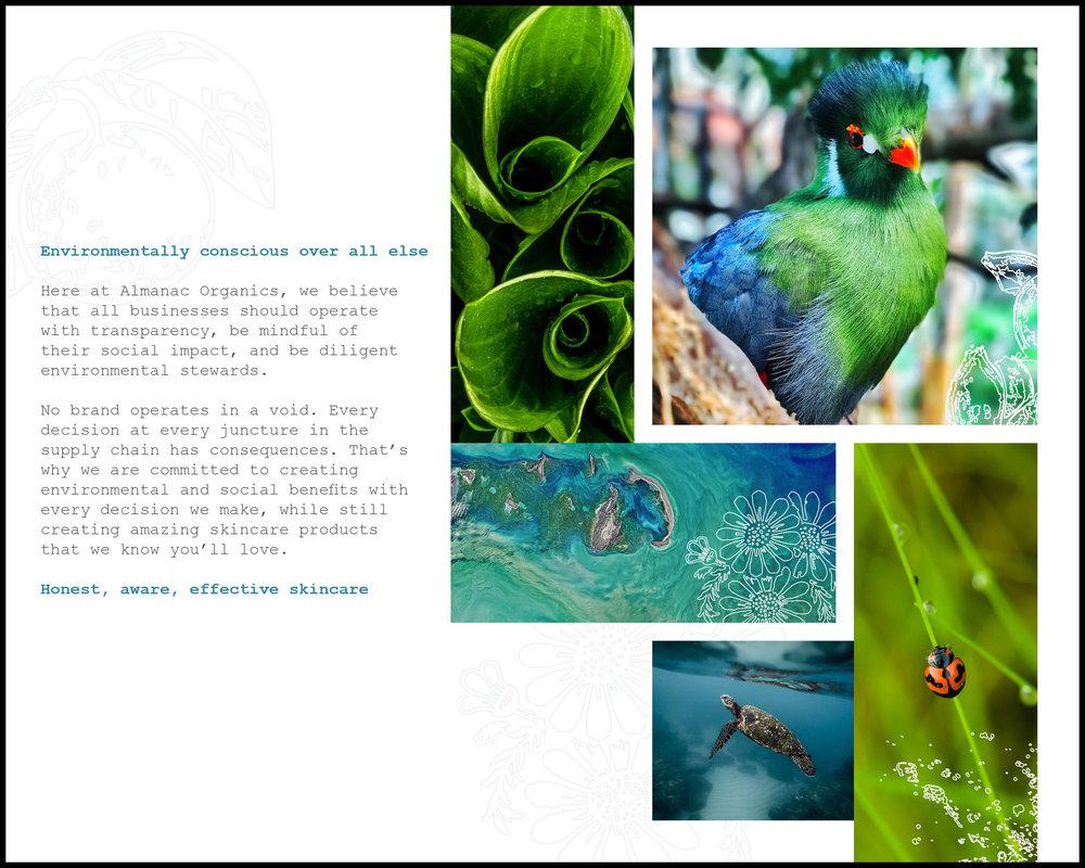 Almanac_Organics_Branding_Guide2.jpg