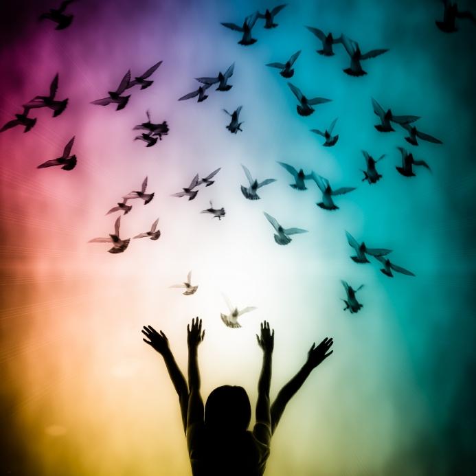 doves colors girls.jpg