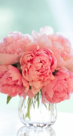 Peony  - Soft, full and lush blooms with a gentle fragrance. Available June - September. (This is an upgraded bloom. We will provide a custom quote based on needs and availability).