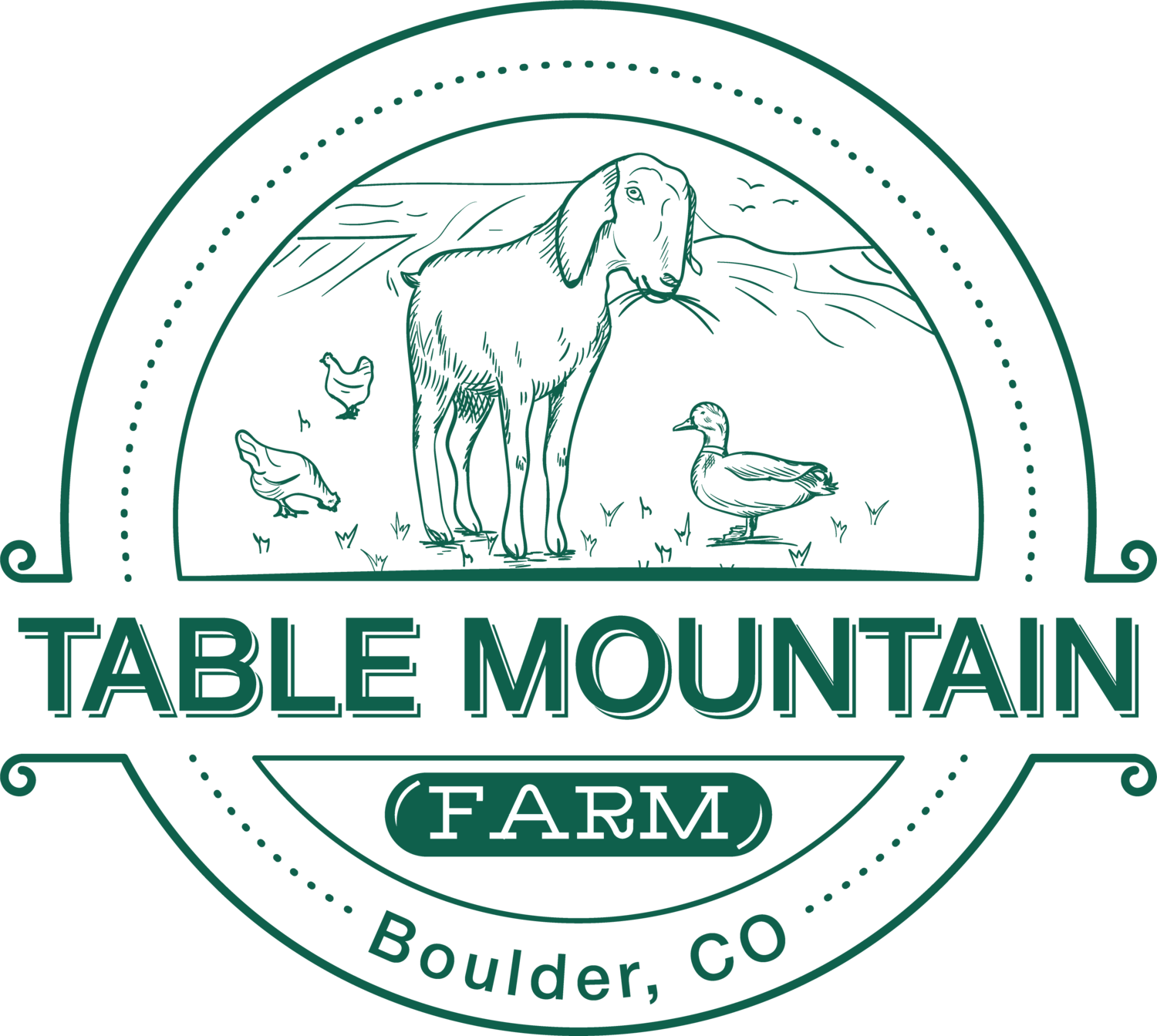 Table Mountain Farm
