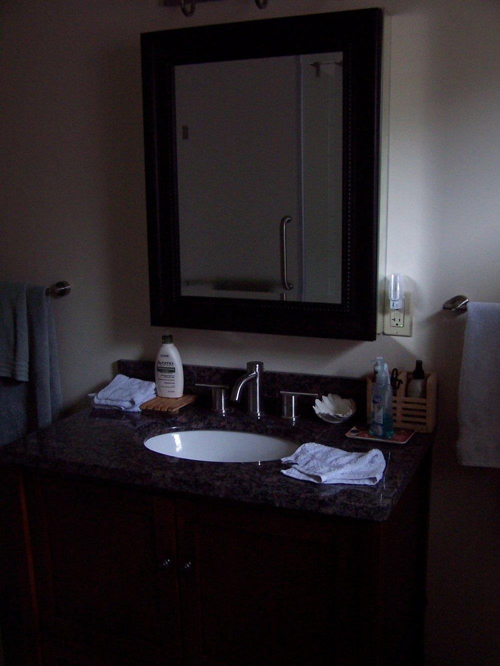 Craig 627 Silver Bathroom Downstairs 2.JPG