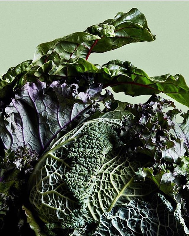 """Did you know you should be eating dark foods during Winter? Welp, we didn't either until seasonal wellness expert @wellinthewest shared this during our last Prep School. """"Every Winter I remind people to seek depth, nourish to the core, care for your bones. One way to do this is by eating black or dark foods."""" Look for dark purple kale and other dark foods that are in season this winter. 🌿#prepschoolfeed Photo by @healthy_ish"""