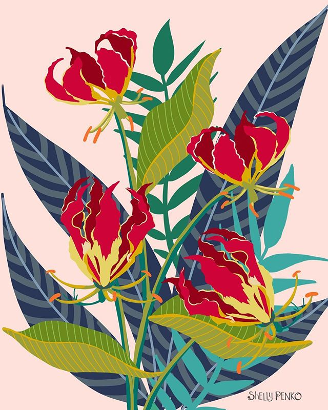 Some gloriousa lilies for #exploreflorals with @victoriajohnsondesign this Friday!  Wishing everyone a beautiful weekend!  #tropicalart #floralart #surfacepatterndesign #surfacedesign #artlicensing #illustration #illustratorsoninstagram  #shellypenko #tropicaldesign