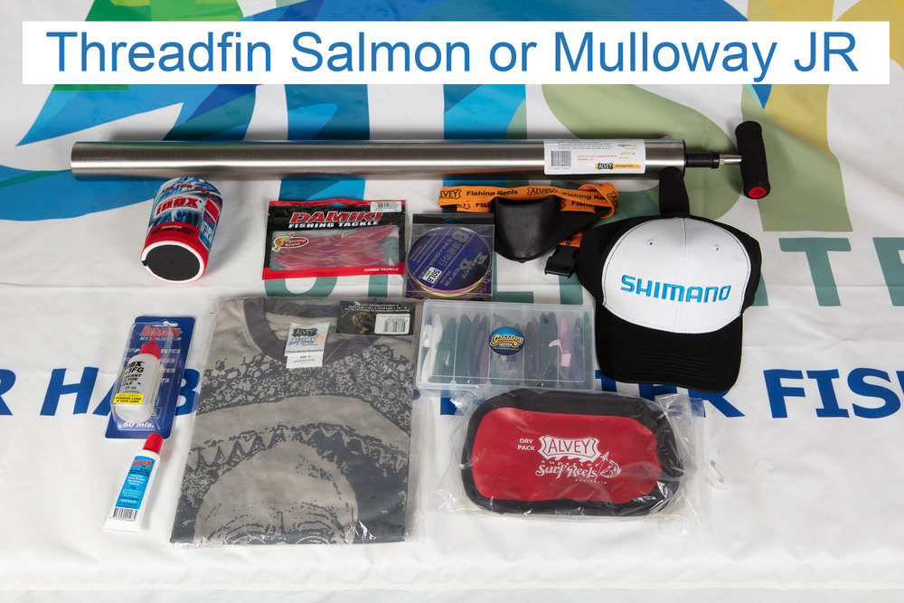 Threadfin Salmon or Mulloway JR.jpg