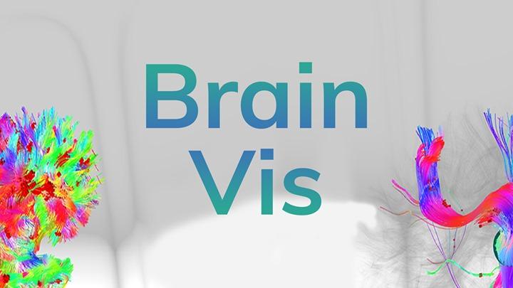 brainvis.jpg