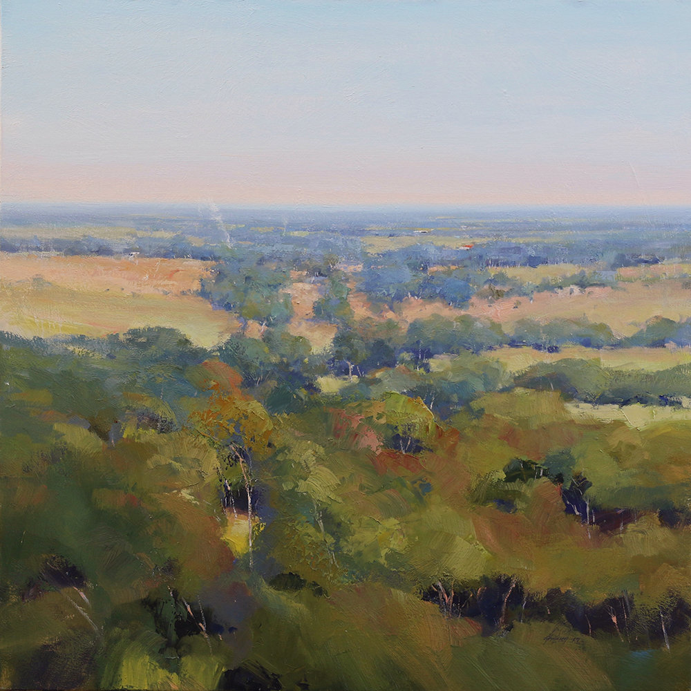 Across The Tree Tops - Finniss    91 x 91cms   oil on canvas