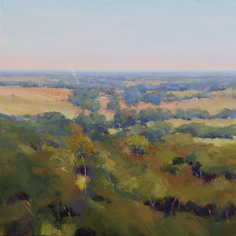 Across The Tree Tops - Finniss    91 x 91cms   oil on canvas
