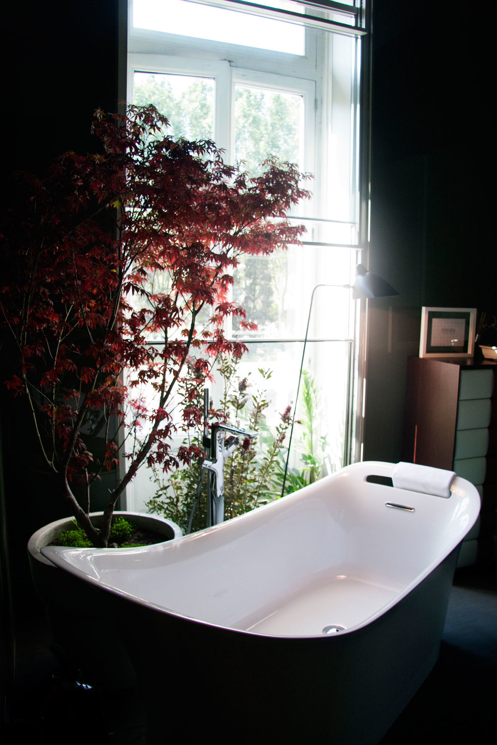 Floor standing bathtub with a red tree in front of a window