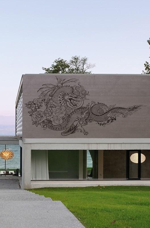 Dragon-Power.jpg.jpg