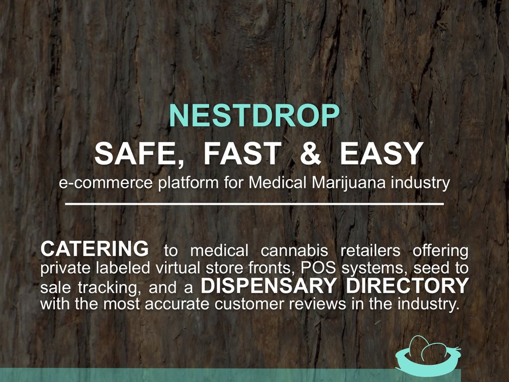 Nestdrop Presentation 2.jpg