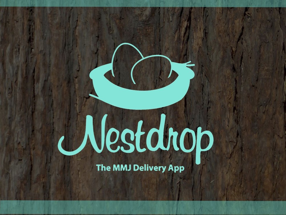 Nestdrop Presentation 1.jpg