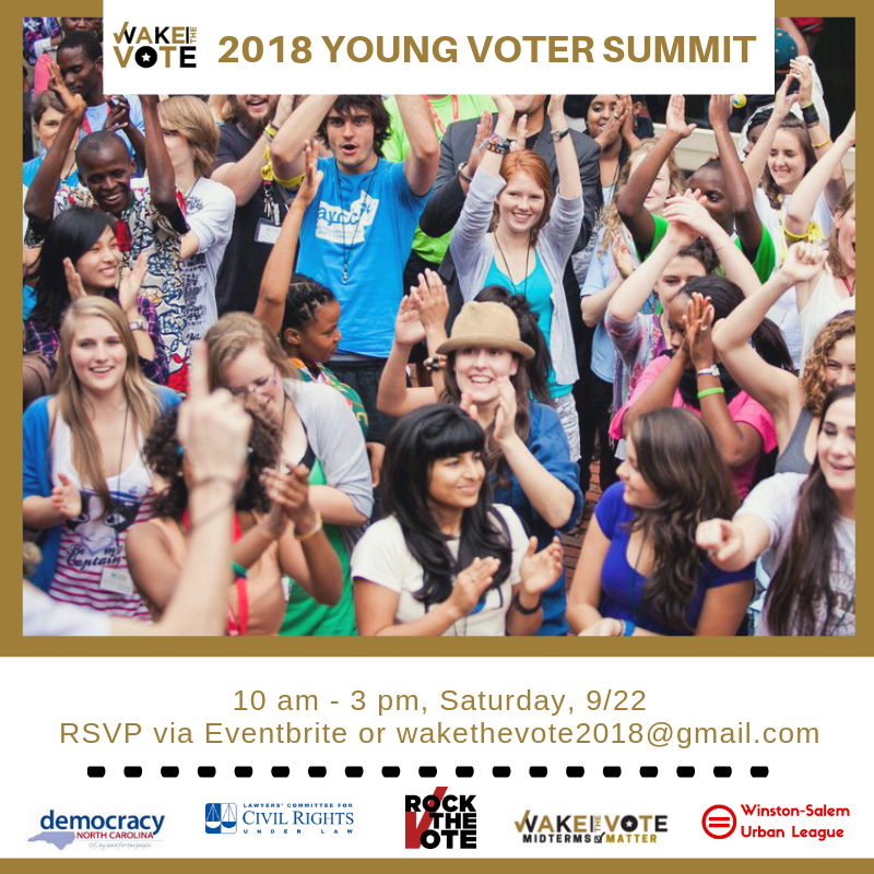 2018 Young Voter Summit.png