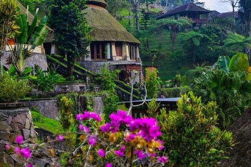 Private Villas overlooking jungle vistas.