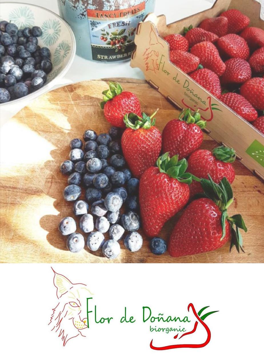 Disfruta de frutos rojos ecológicos, fresas, frambuesas, arándanos y moras. - En Flor de Doñana, cultivamos fruta de la más alta calidad con un impacto mínimo en el planeta, cuidando el entorno y su gente.