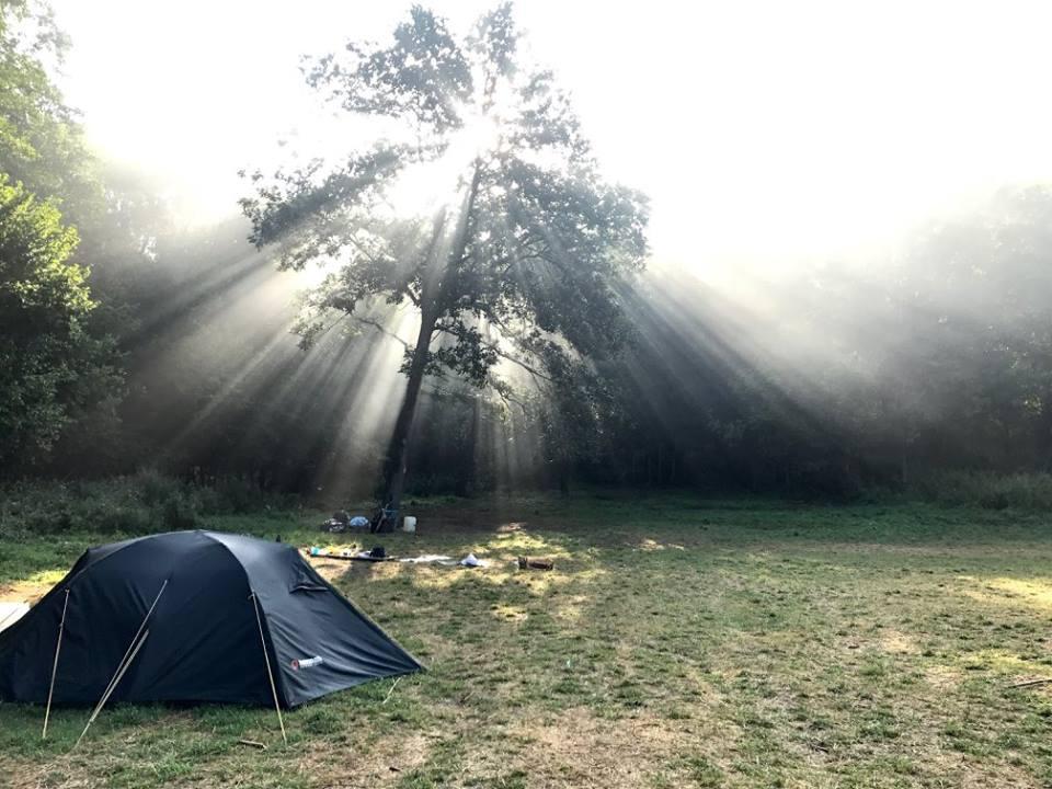 Közhasznú és non-profit egyesületünk önkéntesei szervezik a terepi környezeti nevelésben etalonnak számító, több mint 30 éves múltra visszatekintő, nomád természetismereti gyermektáborokat, a Süni és a Sündörgő táborokat. -