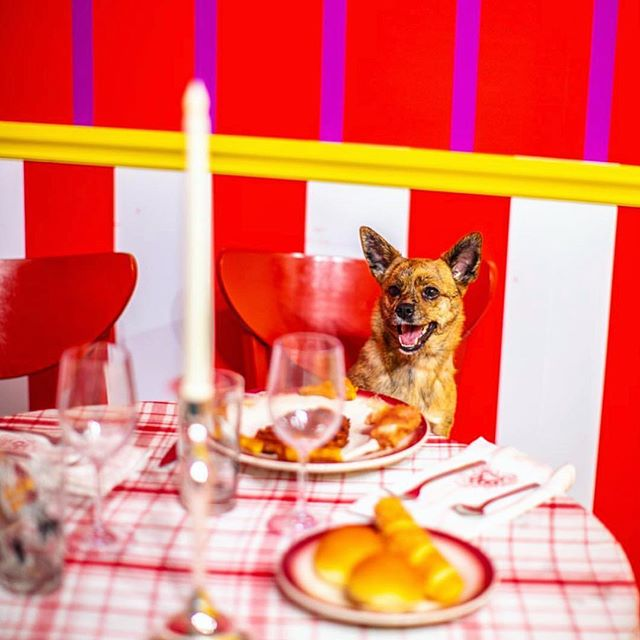 Waiting for my date like... 🍽 📸:@nyc_tiga #humansbf