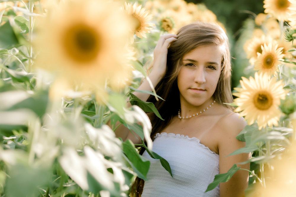 sunflower (32 of 152).jpg