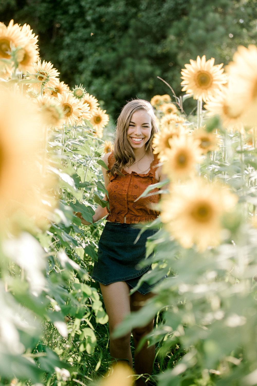 sunflower (24 of 152).jpg