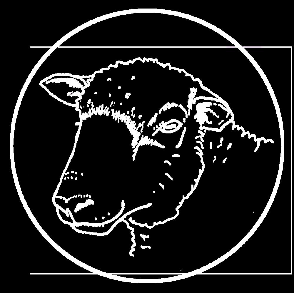 Ewe-logo-339900sml_White.png