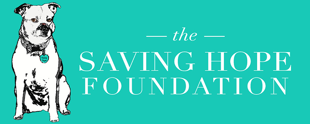 THE SAVING HOPE FOUNDATION