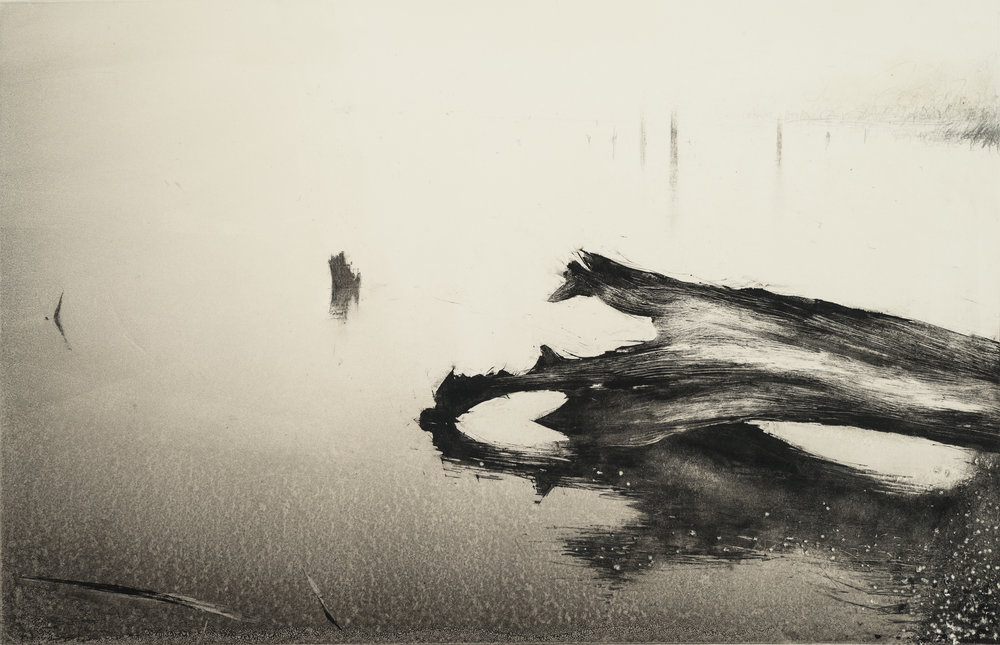 "Wendy Orville,  Fallen Tree Blakely , Monotype, 11""x17"", 2018"