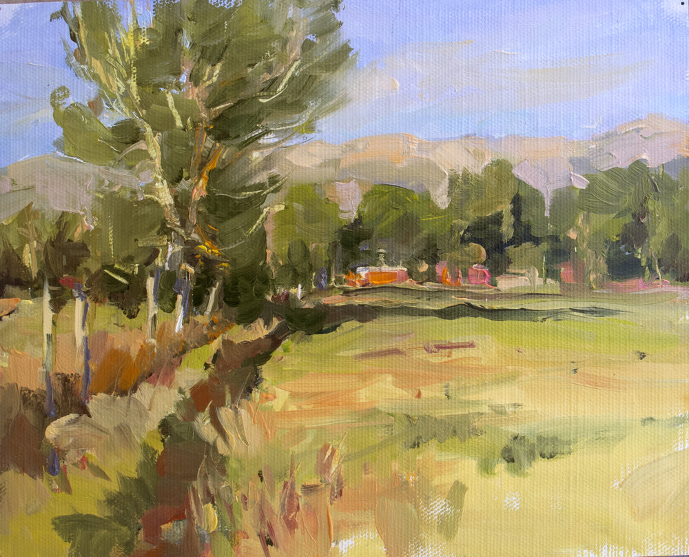 Copy of Field In Victor, 6x8, Oil