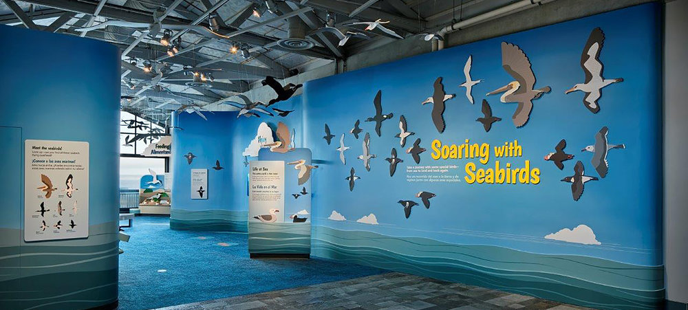 - Monterey Bay Aquarium, sky gradient wraparound wall