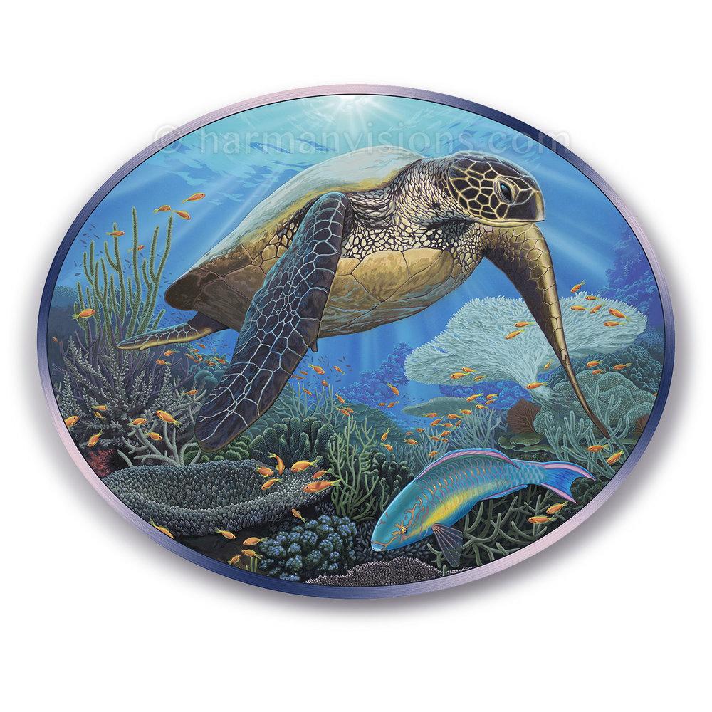 SEA TURTLE oval
