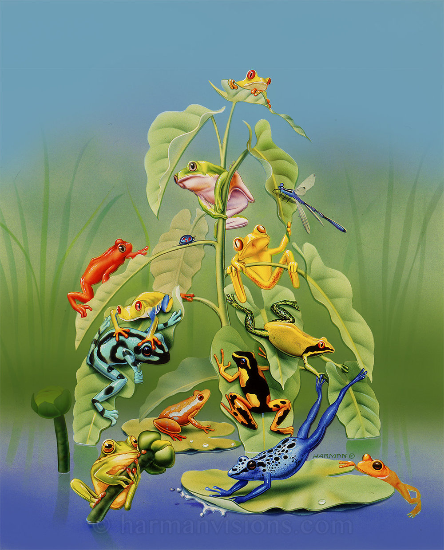 Comic Frogs
