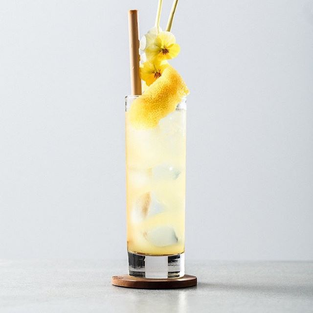 Christmas might be over, but with New Years eve around the corner there is still enough reason to celebrate. 🍾 Get in a festive mood with a #ManaKombucha Cocktail composed by the @cocktailprofessor. Today we're making this amazing Lovely Lemon 🍋 Cocktail, a fresh and exciting drink. Enjoy and Have a good one!⁣ ⁣ LOVELY LEMON COCKTAIL⁣ 🍹 15 cm 'muddled' lemongrass⁣ 20 ml Lemon juice 45 ml limoncello⁣ 65 ml MANA Kombucha Lovely Lemon⁣ ⁣ Add all ingredients except MANA to a shaker filled with ice. Shake and double strain over new ice. Top with MANA and garnish with a fresh lemon slice and if you like, edible flowers.⁣ ⁣ ⁣ ⁣ #mana #manakombucha #kombucha #kombuchalove #fermented #organic #organicfoods #vegan #vegandrinks #healthylife #healthyliving #organicsoda #fermentation #healthydrinks #sugarfree #raworganic #cleanfood #cleaneating #kombuchaaddict #boostyourhealth #brewing #wholefoods #naturaldrink #lemon