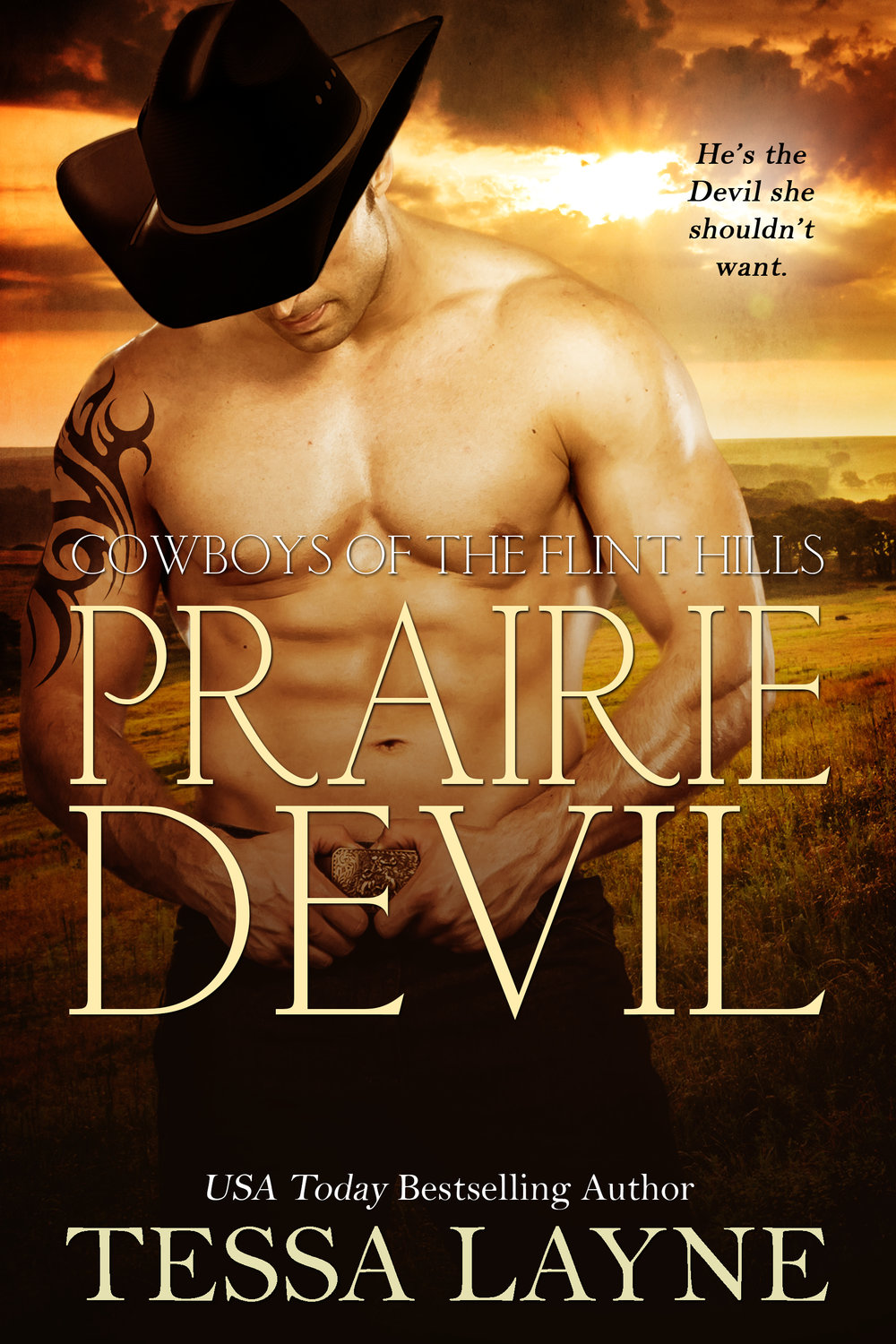 He's the Devil she shouldn't want - Thrown out of the house when he was seventeen, bad boy Colton Kincaid left Prairie in the rear-view mirror and never looked back. Determined to make something of himself, he scrapped his way to superstardom at the top of the rodeo circuit, leaving behind a string of broken hearts. He's perfectly happy with his no-strings-attached life until a chance encounter with hometown good girl Lydia Grace leaves him questioning everything and wanting a shot at redemptionDownload HereKINDLE IBOOKS NOOK GOOGLE KOBO
