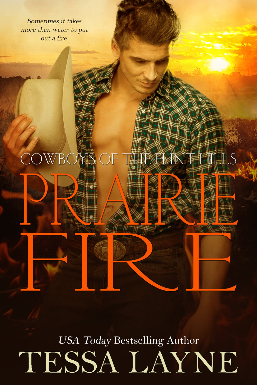Only love can quench this fire - When Cassidy volunteers for a dangerous hotshot mission in the wilds of Colorado, Parker insists on going with her. As they travel together into a life-threatening situation, will their love combust like the trees that surround them? And in the battlefield of a forest fire, will Cassidy be brave enough to fight for the one thing that will snuff out the fires that rage within her?Download HereKINDLE IBOOKS NOOK GOOGLE KOBO