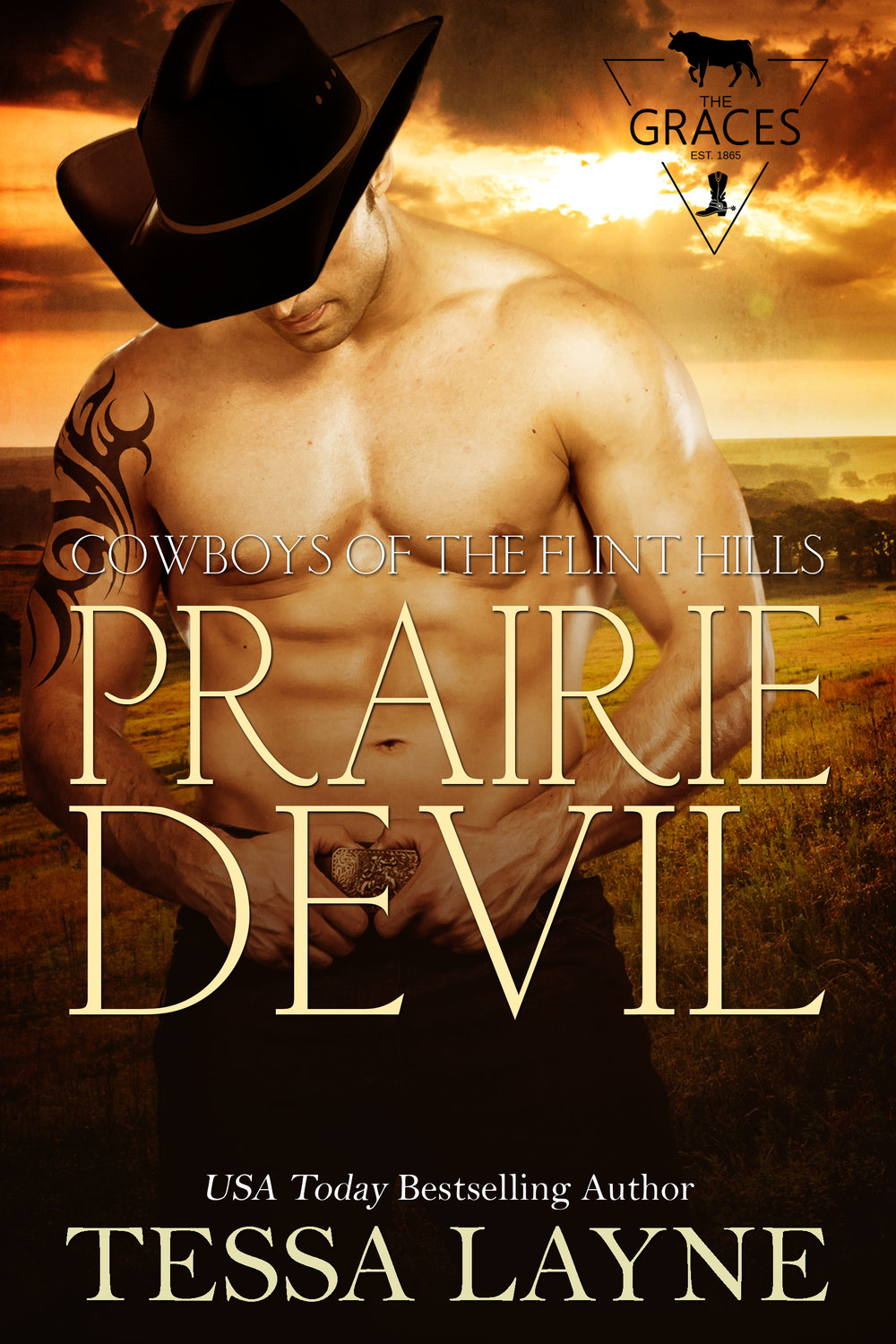 He's the Devil she shouldn't want - Thrown out of the house when he was seventeen, bad boy Colton Kincaid left Prairie in the rear-view mirror and never looked back. Determined to make something of himself, he scrapped his way to superstardom at the top of the rodeo circuit, leaving behind a string of broken hearts. He's perfectly happy with his no-strings-attached life until a chance encounter with hometown good girl Lydia Grace leaves him questioning everything and wanting a shot at redemption