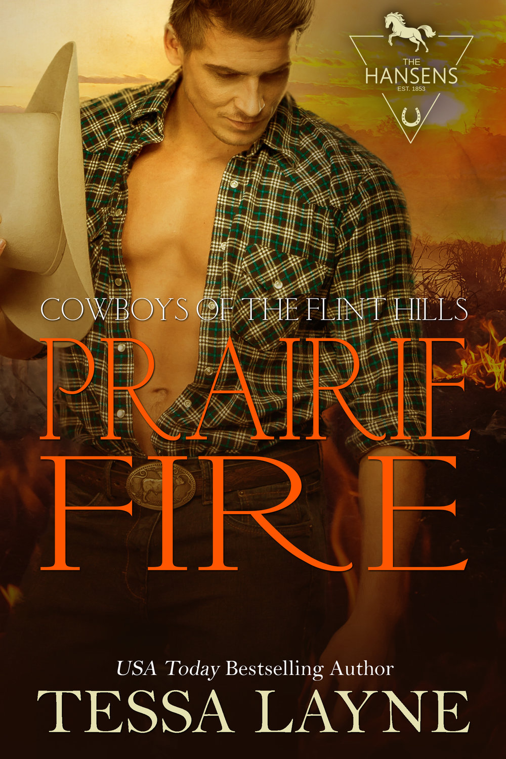 Only love can quench this fire - When Cassidy volunteers for a dangerous hotshot mission in the wilds of Colorado, Parker insists on going with her. As they travel together into a life-threatening situation, will their love combust like the trees that surround them? And in the battlefield of a forest fire, will Cassidy be brave enough to fight for the one thing that will snuff out the fires that rage within her?