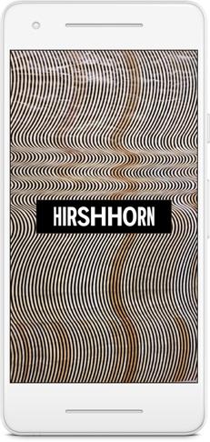 Hirshhorn.jpg