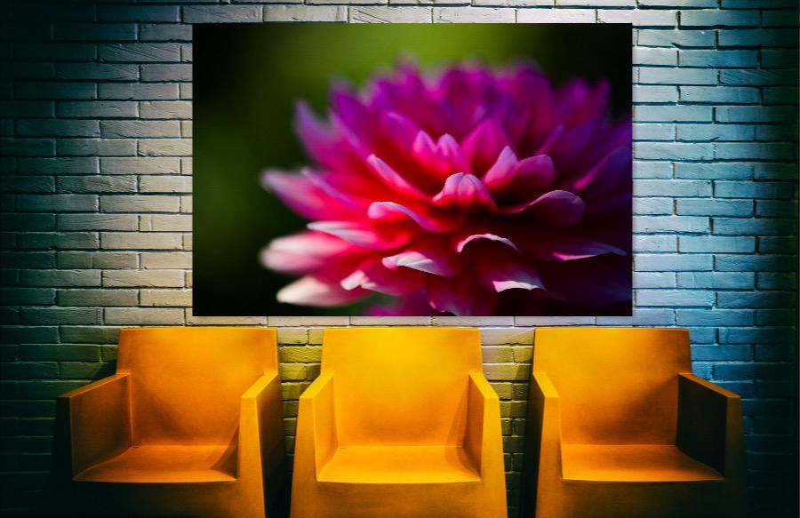 EI_3 YELLER SEATS + PINK FLOWER.JPG