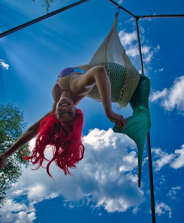 Aerial Ariel